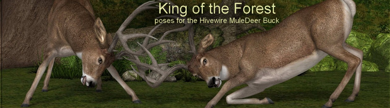 KingOfTheForest